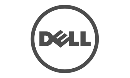 Success cases: DELL
